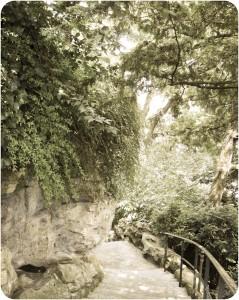 Promenade dans les jardins