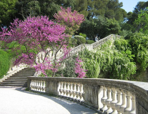 les-jardins-de-la-fontaine-nimes-promenade