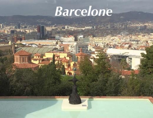 Visit-to-barcelone-ciudad-centre-ville