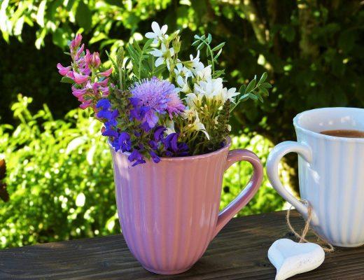 flowers-matin-blog-les-chroniques-de-myrtille