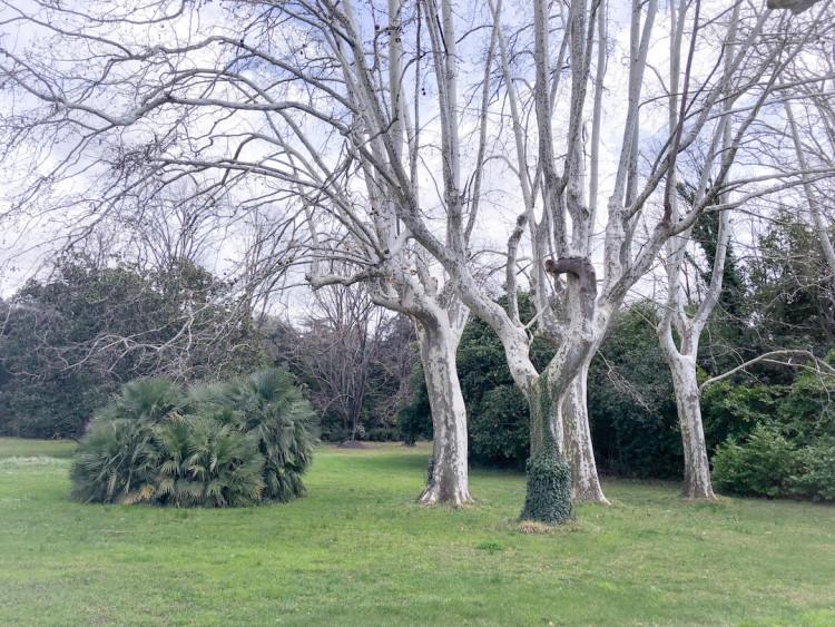 Chateau-raissac-blog-lcdm-11