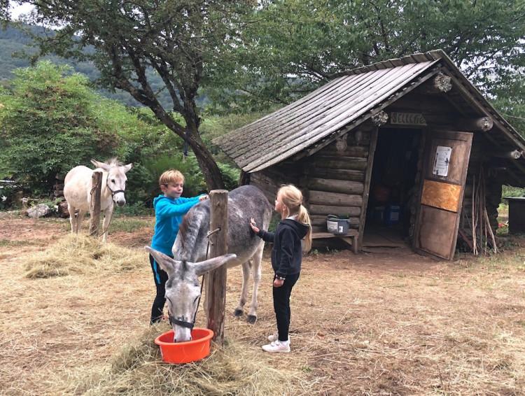 randonnée-âne-blog-lcdm