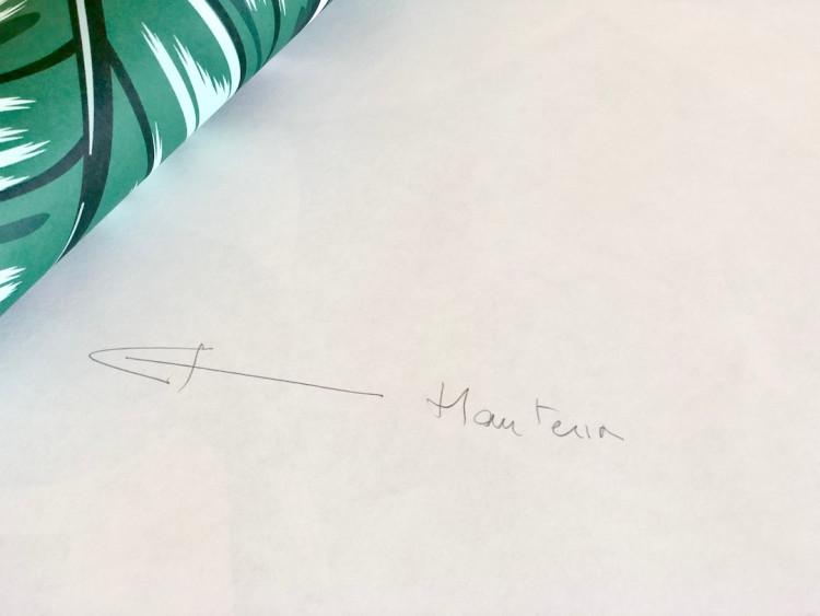 papier peint myloview préparation de la colle mode d'emploi