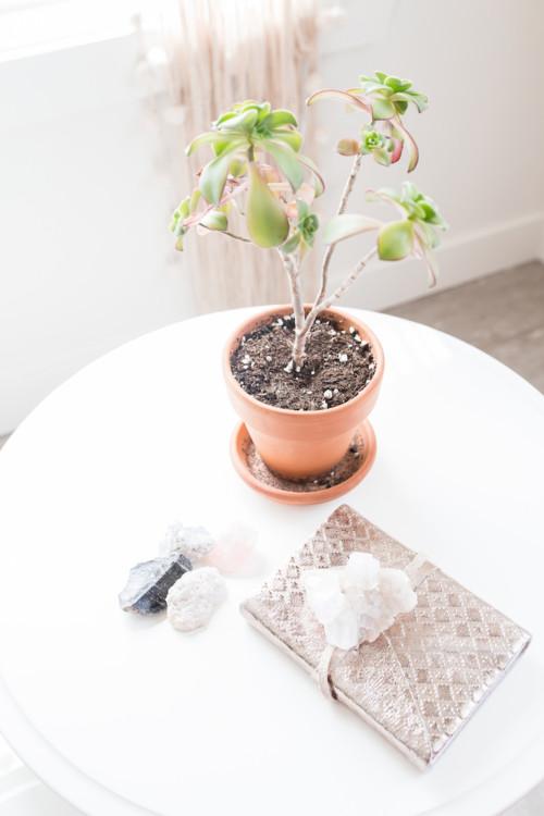 Table basse, plante grasse et carnet argenté