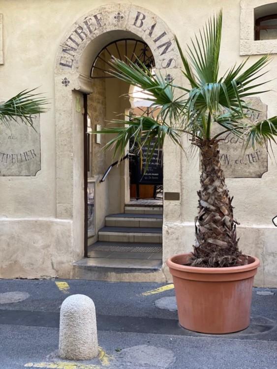 Les bains de Montpellier ancien bains public