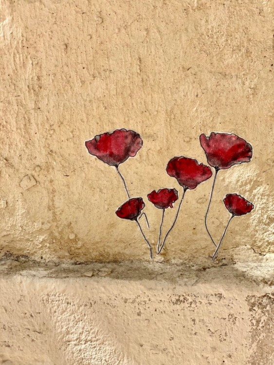 Street art coquelicots rue de Montpellier